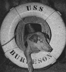 USS Burleson pig